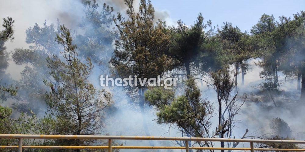 Φωτιά στο Σέιχ Σου – Κλειστή η Περιφερειακή Οδός Θεσσαλονίκης – Εκκενώθηκε το ξενοδοχείο Φιλλίππειον
