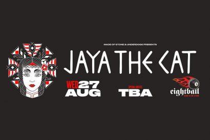 Jaya the cat live in Thessaloniki